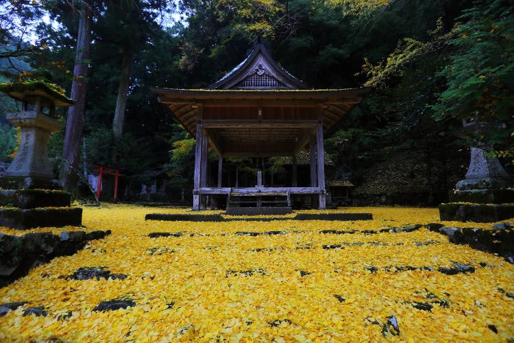 岩戸落葉神社_e0051888_443523.jpg