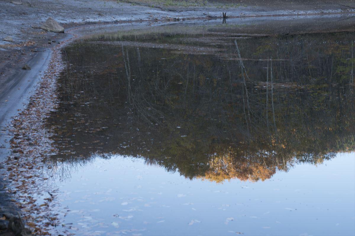 晩秋のダム湖_b0074098_19575882.jpg