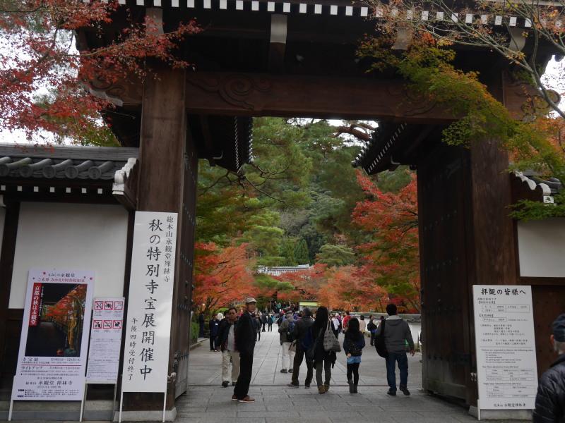 京都紅葉巡り5最終日(11/25-2 永観堂)_c0360399_16382595.jpg
