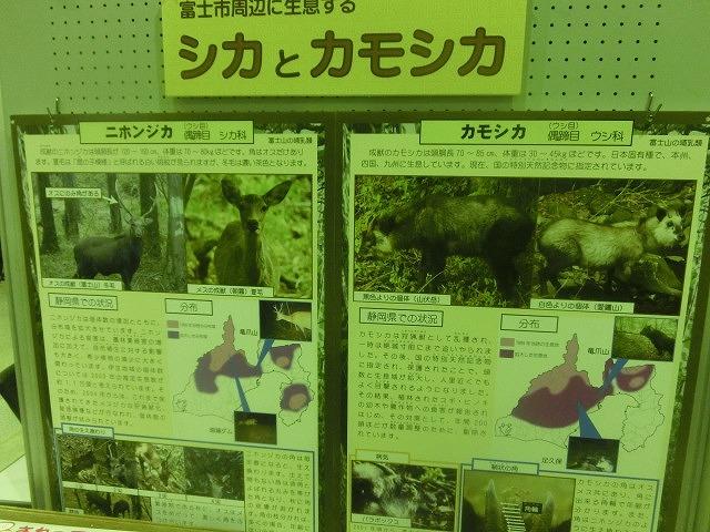 「富士市の公害克服史コーナー」も  第9回 富士市環境フェア_f0141310_763928.jpg