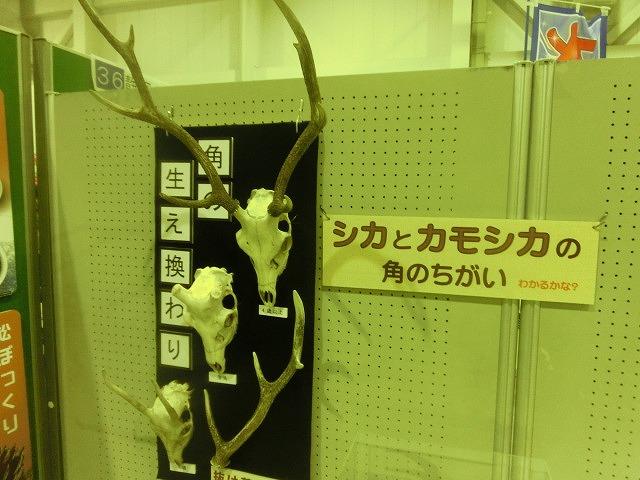 「富士市の公害克服史コーナー」も  第9回 富士市環境フェア_f0141310_764624.jpg