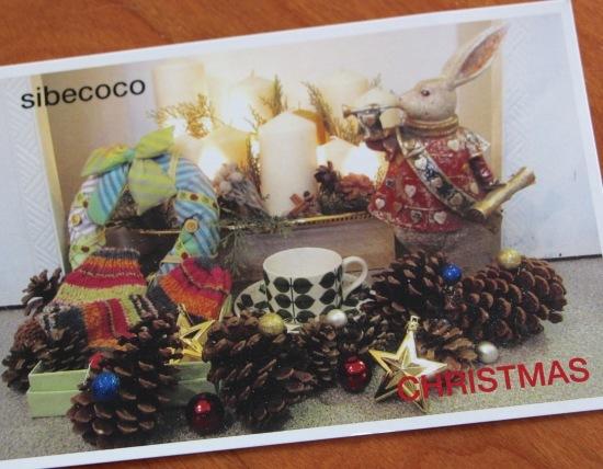 シベココのクリスマス♪_f0197215_09481880.jpg