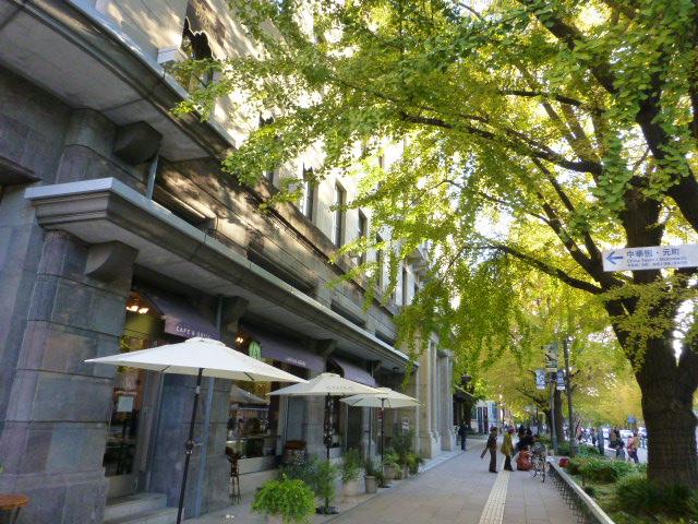 秋の横浜 散歩_e0237625_1716551.jpg