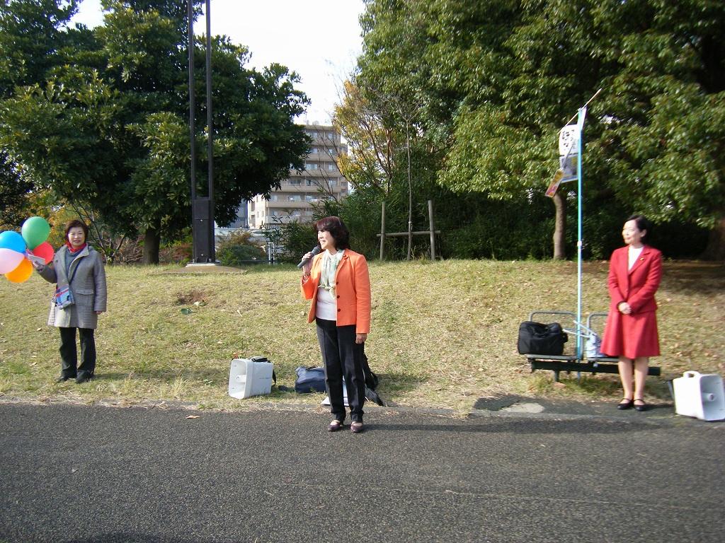 ふじさわピースパレード_a0127342_5522623.jpg