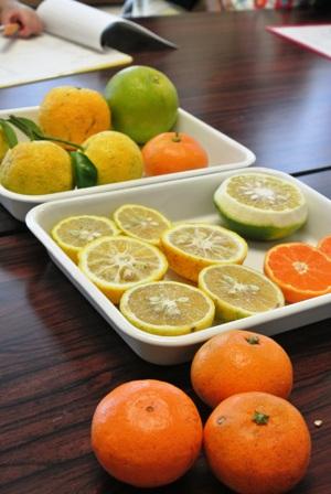 柑橘たっぷりポン酢作り講座 開催しました♪_d0298850_2343743.jpg