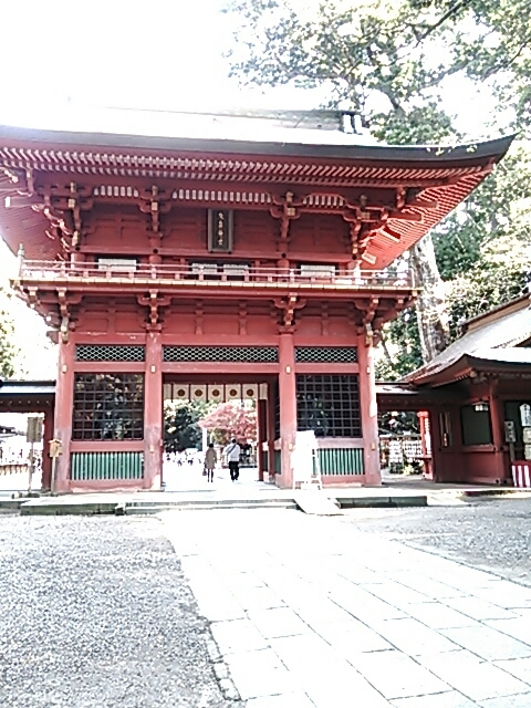 鹿島神社から佐倉へ_c0206366_08414239.jpg
