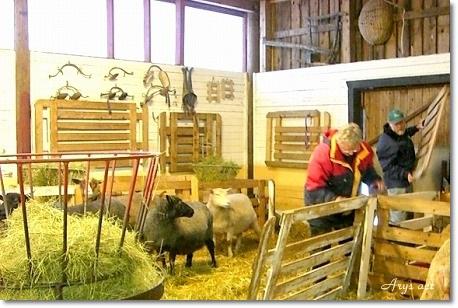 スウェーデンの「くるくる羊ラグ」_c0243369_22141833.jpg