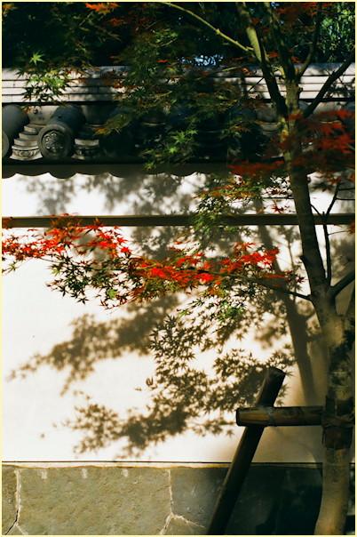 東京の秋 -3_b0340572_11472126.jpg
