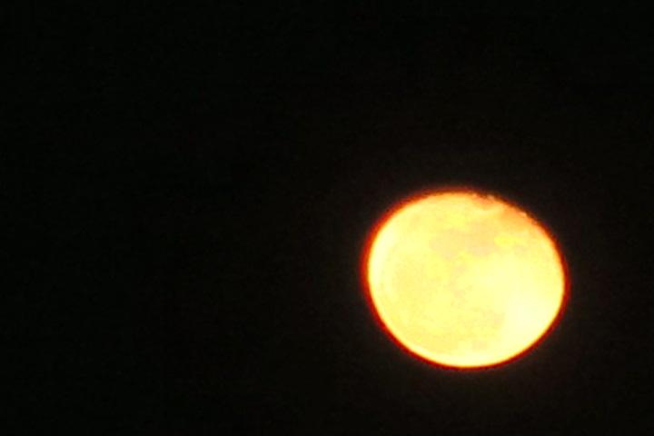 エッ、、、東京でも月が見えるの?(笑)_e0292172_18221786.jpg