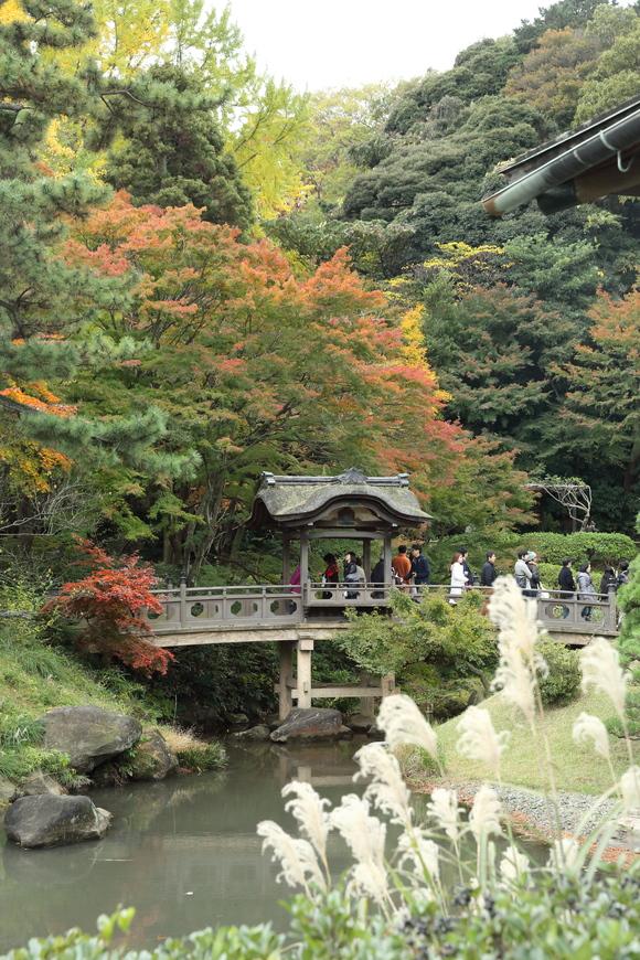 根岸森林公園と三渓園_b0275998_10472979.jpg