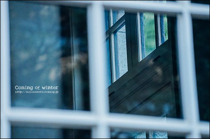 冬のおとずれ_f0100215_00454209.jpg
