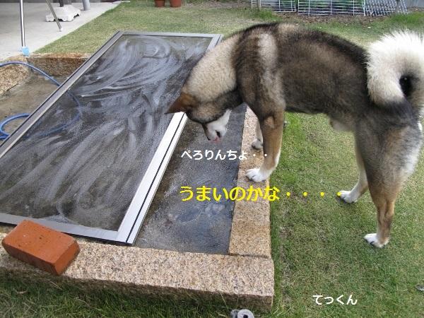 f0143123_10465447.jpg
