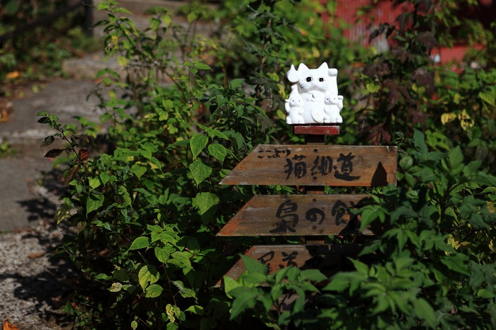 尾道への(プチ) 旅 3_a0294534_18393415.jpg