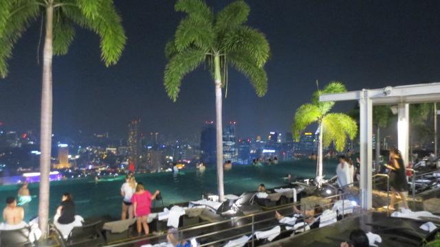 シンガポール旅行記 ④ラッフルズホテルとナイトサファリ_e0212073_19141495.jpg