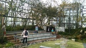 都会のオアシス、豊島区区役所_d0297177_8362973.jpg