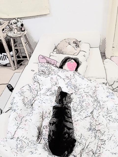 寝ちゃだめ!_a0126590_01113431.jpg