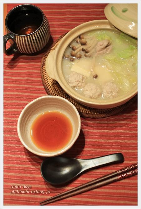 鶏団子の水炊き_f0179404_221595.jpg