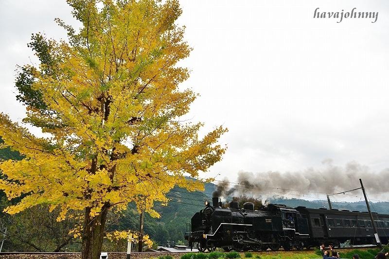 青から黒へ~SL大井川鉄道~_c0173762_017142.jpg