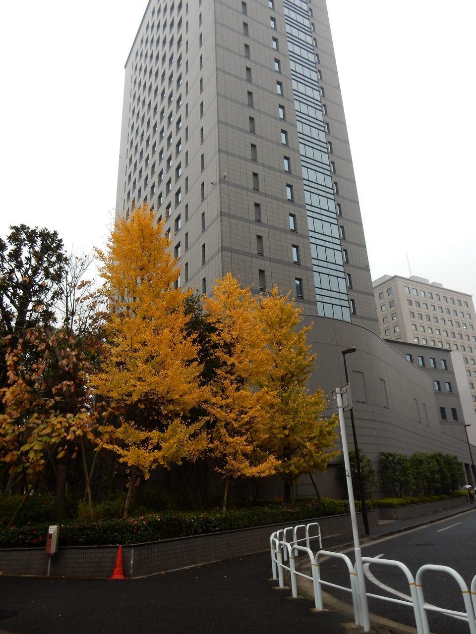 東京から札幌へ_c0025115_20531442.jpg