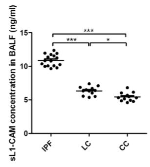 IPFや肺癌におけるL1-CAMの役割_e0156318_232369.png