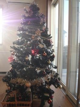 12月 クリスマスイベント出店します_c0369433_16131457.jpg