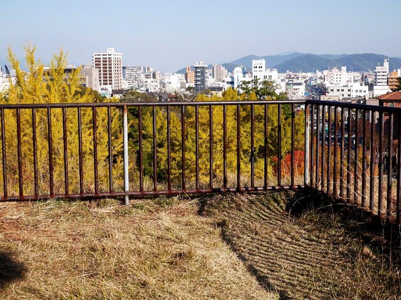 和歌山便り_b0093754_22333338.jpg