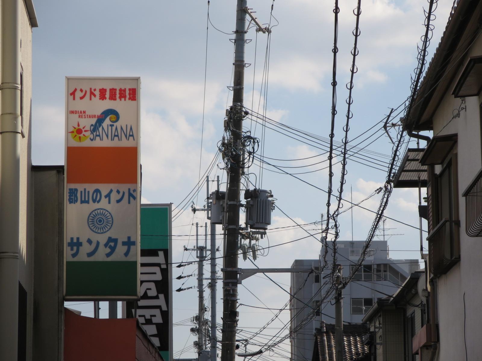ガンジス金魚_c0001670_19570096.jpg