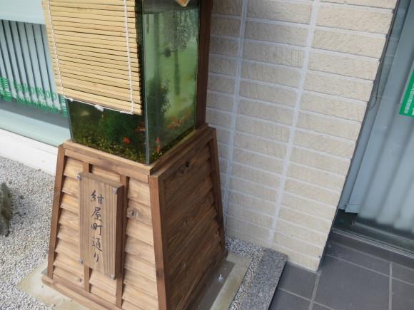 ガンジス金魚_c0001670_19583924.jpg