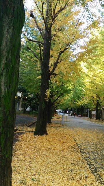 東京はパワースポットですね☆_a0098174_1245954.jpg