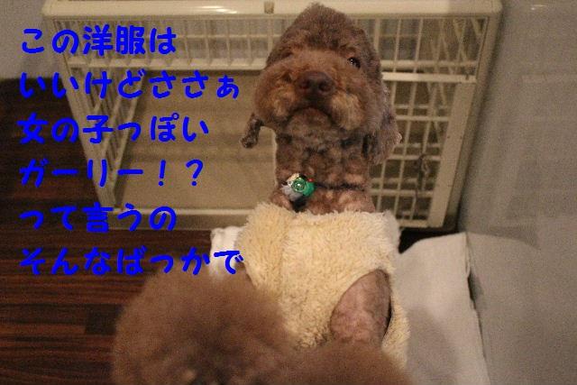 b0130018_0412573.jpg