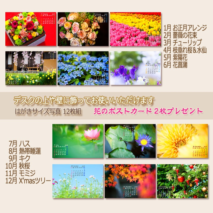 c0037519_9531424.jpg