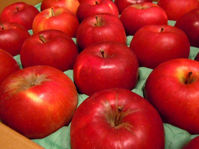 ■リンゴは只今紅玉^^_f0141979_23333028.jpg