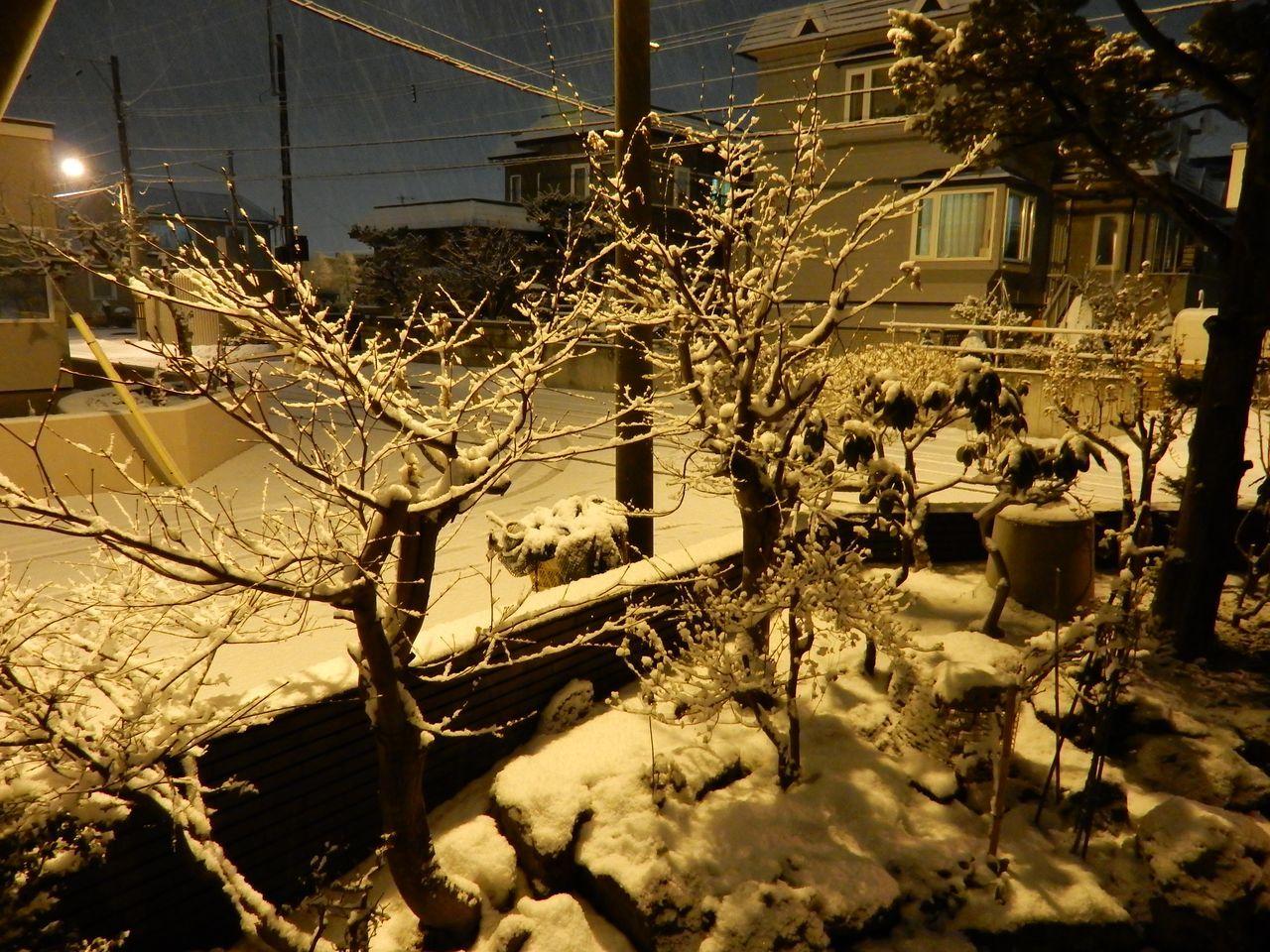 嵐にならない札幌_c0025115_21253515.jpg