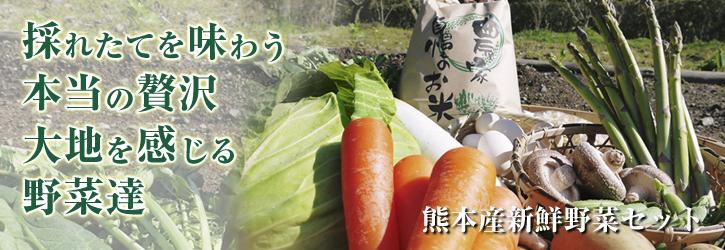 新鮮野菜スティックにも大好評!朝採りキュウリ、セロリ、ニンジン販売中!!_a0254656_945885.jpg