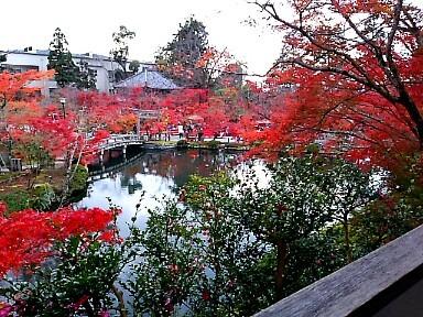 初冬の京都へ_c0055363_17181114.jpg