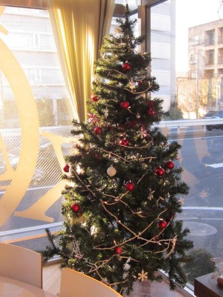 もうすぐクリスマス_a0211066_10315597.jpg