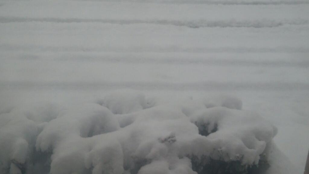 平成27年12月5日㈯今朝の函館の天気と積雪、気温は。雪が降る函館_b0106766_07555421.jpg