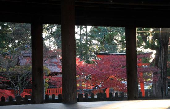 紅葉だより56 名残の紅葉 上賀茂神社_e0048413_1859030.jpg