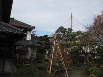 """「芭蕉の館」""""雪吊り""""風景_f0289632_12543510.jpg"""