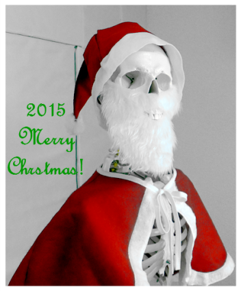 クリスマス会_c0350941_23140821.png
