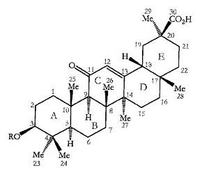 育毛剤の成分 ~β-グリチルレチ...