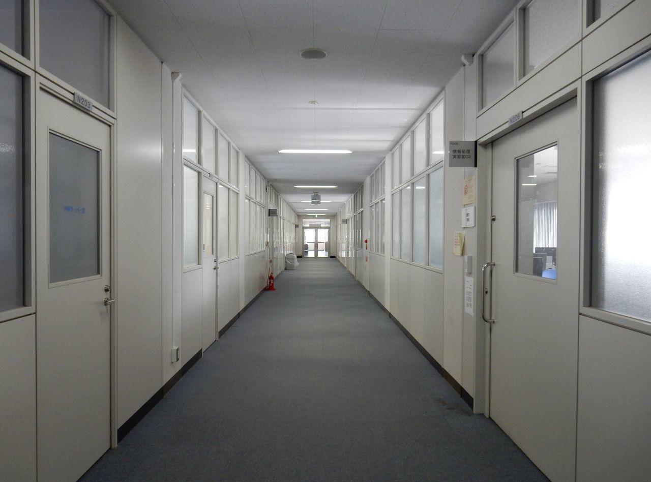 北海道大学の写真がどっさりのサイト_c0025115_19302607.jpg