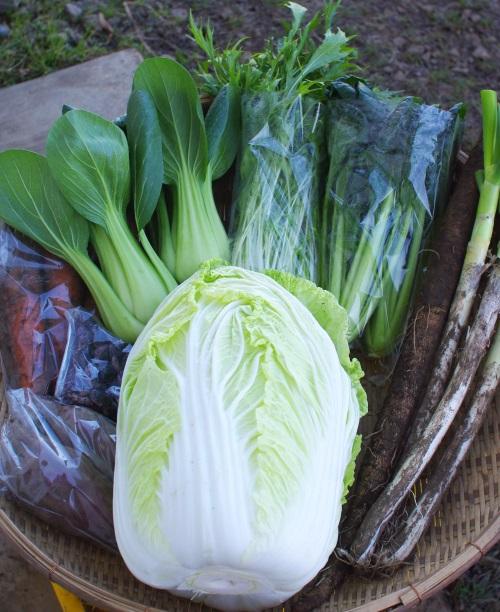 今週の野菜セット(12/8~12/12着)_c0110869_11204299.jpg