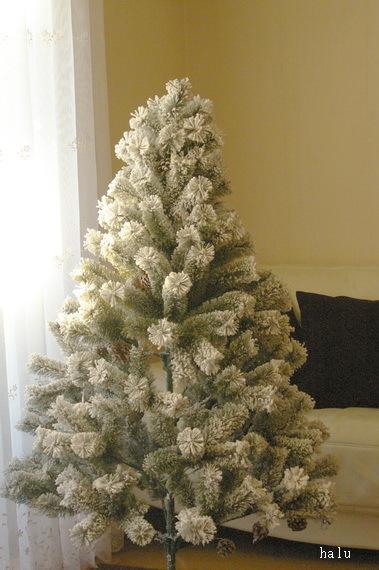 クリスマスツリーと料理本_d0327373_17420795.jpg