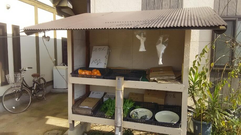 """松山店:近隣ランチ情報 """"ちとせ食堂""""_b0163075_13265255.jpg"""