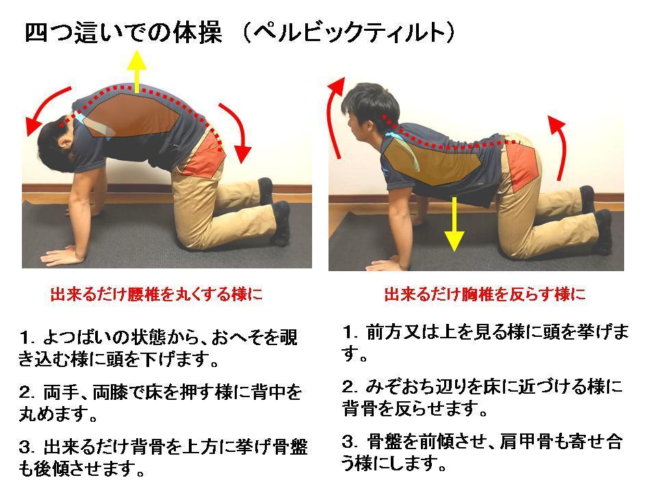 腰痛を自分で改善させる方法③(腰を反ると痛い方へ・・・)_c0362789_06145846.jpg