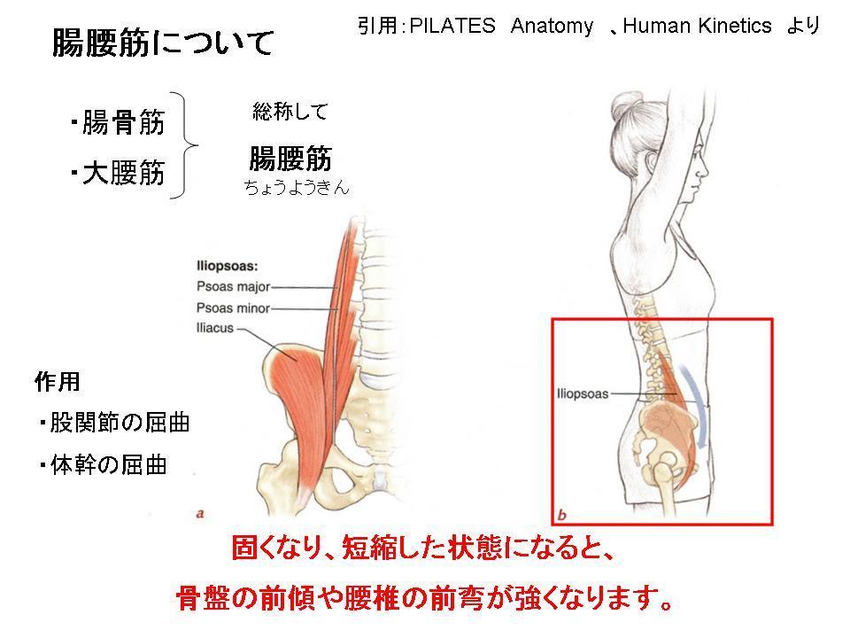 腰痛を自分で改善させる方法③(腰を反ると痛い方へ・・・)_c0362789_06194278.jpg