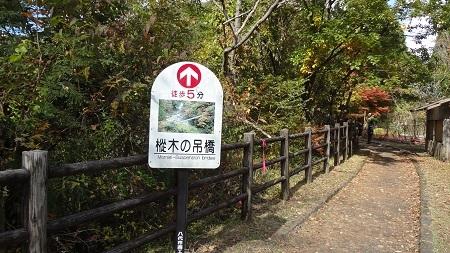 秘境・五家荘 ~樅木の吊橋~_b0228113_13022926.jpg