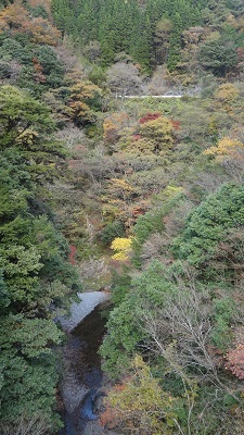 秘境・五家荘 ~樅木の吊橋~_b0228113_13061067.jpg