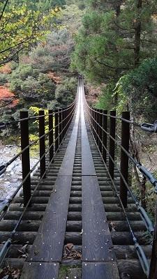 秘境・五家荘 ~樅木の吊橋~_b0228113_13064102.jpg